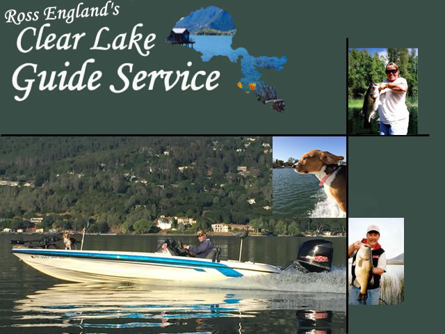 Ross England's Clear Lake Guide Service